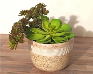 A soft pink and white freckled planter to dress up your shelf.