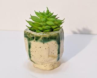 A small little planter for your table.